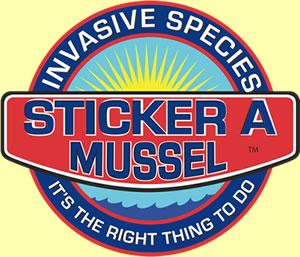 Mussel Report